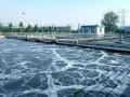 危险废物安全填埋场的废水处理方法分析